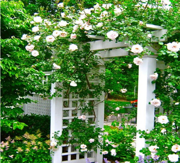 Garden entrance arbor ideas pergola gazebos for Garden archway designs