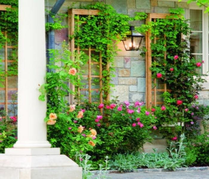 Trellises over windows brings beauty to house pergola for Window trellis design