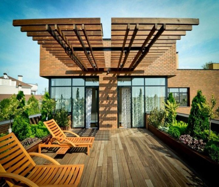 Rooftop pergolas a creative bar ideas pergola gazebos - Pergola climbing plants under natures roof ...