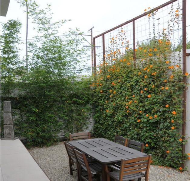 Garden Trellises Ideas 5