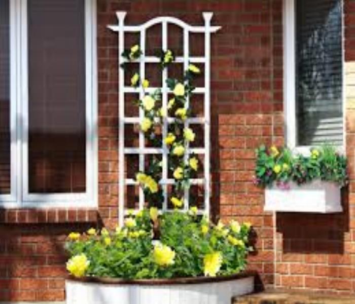 Trellis Over Window Designs