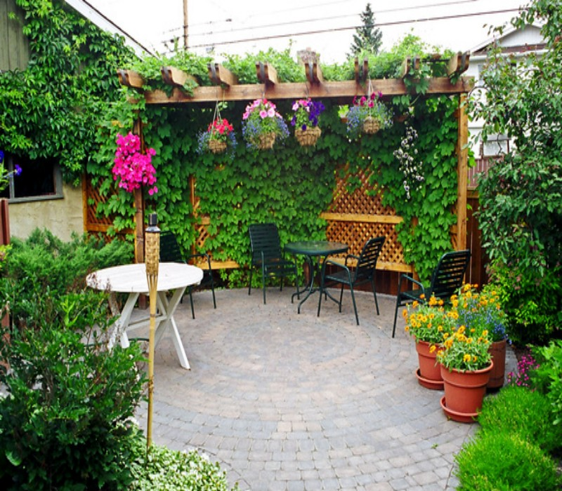 Stunning Garden Pergola 1