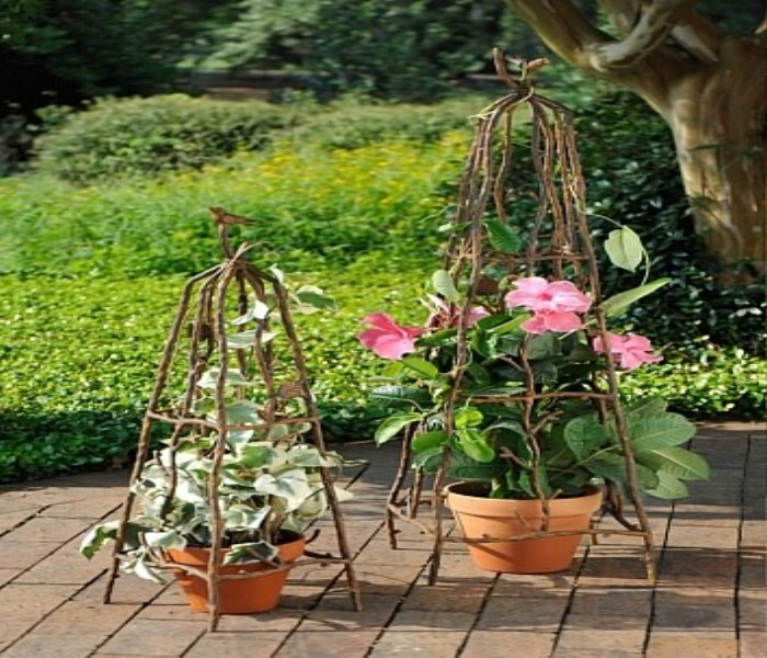 Amazing Ideas for Trellis Garden Decor
