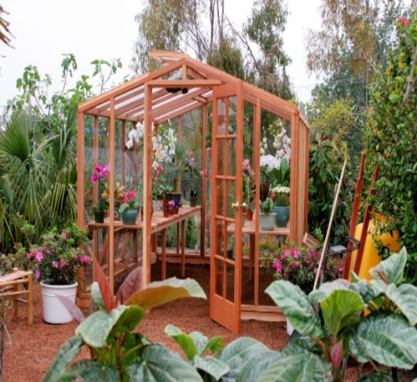 Gazebos For Indoor Plants 2