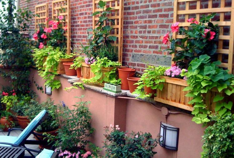 Trellis Ideas for Garden 1