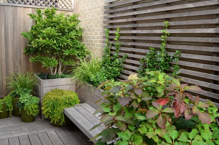 Trellis Ideas for Garden 2
