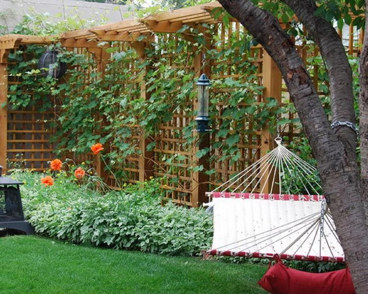 Trellis Ideas for Garden 5