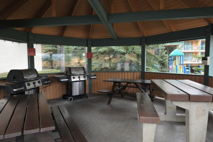 Outdoor Gazebo Kitchen 4