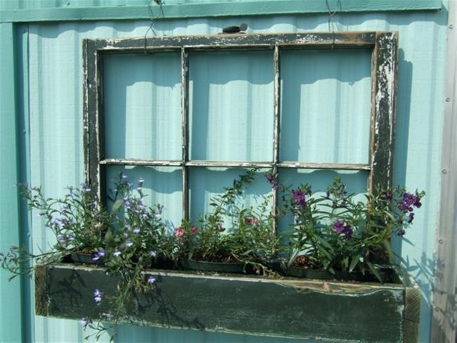 Old Windows For Making Trellises 5