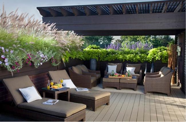 Garden in Pergola Deck 10
