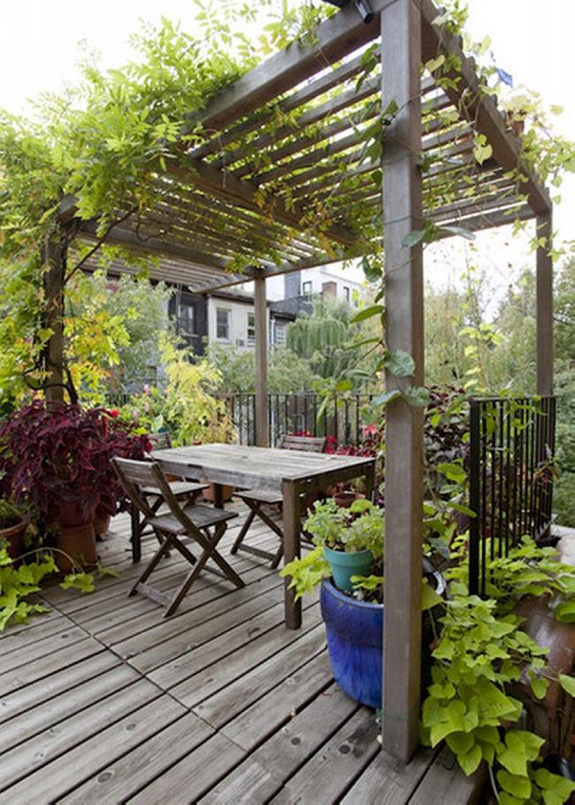 Garden in Pergola Deck 4