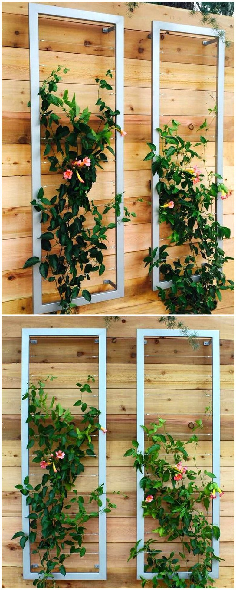 Awesome Trellises Design Ideas for Your Backyard | Pergola Gazebos