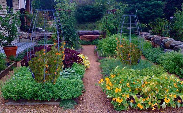 Trellis Design Ideas 14