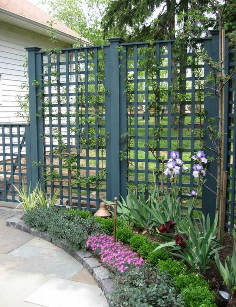 Awesome trellises design ideas for your backyard pergola for Trellis design ideas