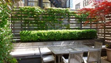 Awesome Trellises Design Ideas for Your Backyard
