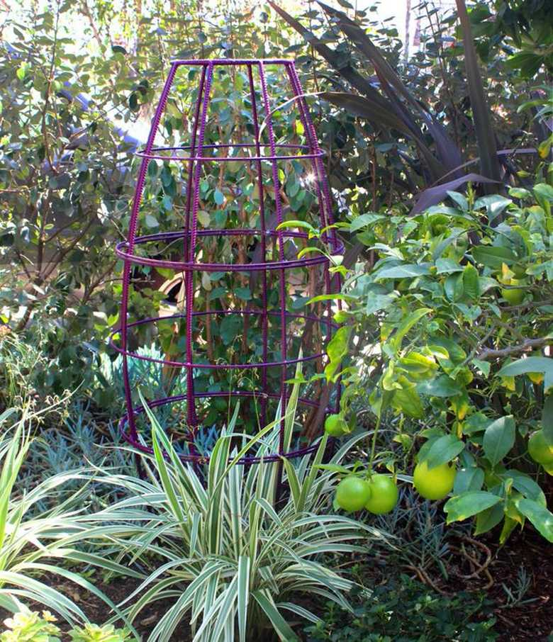 Trellis Design Ideas 21