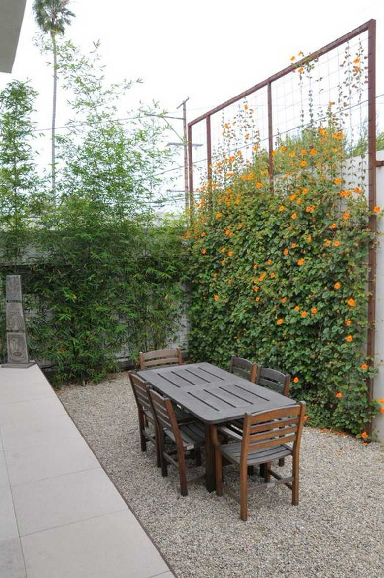 Trellis Design Ideas 3