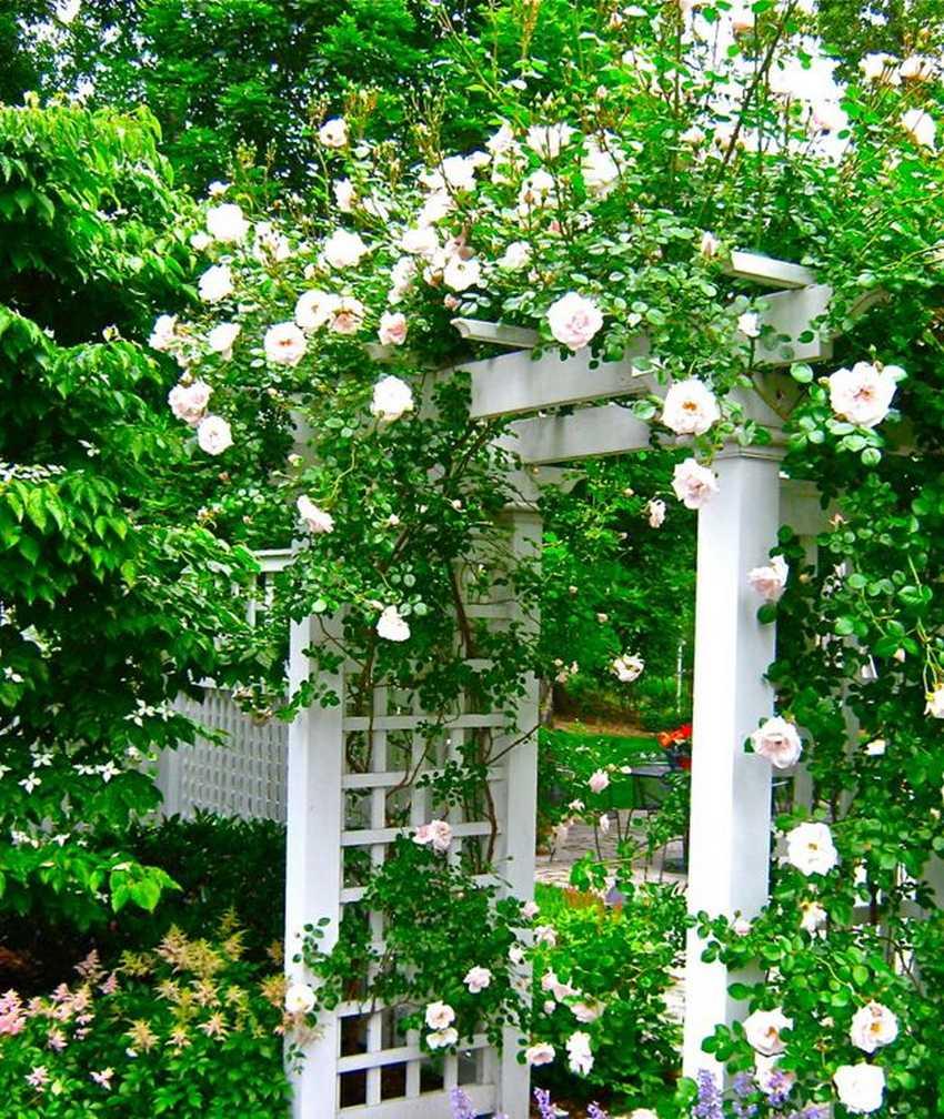 patio arbor design ideas 18