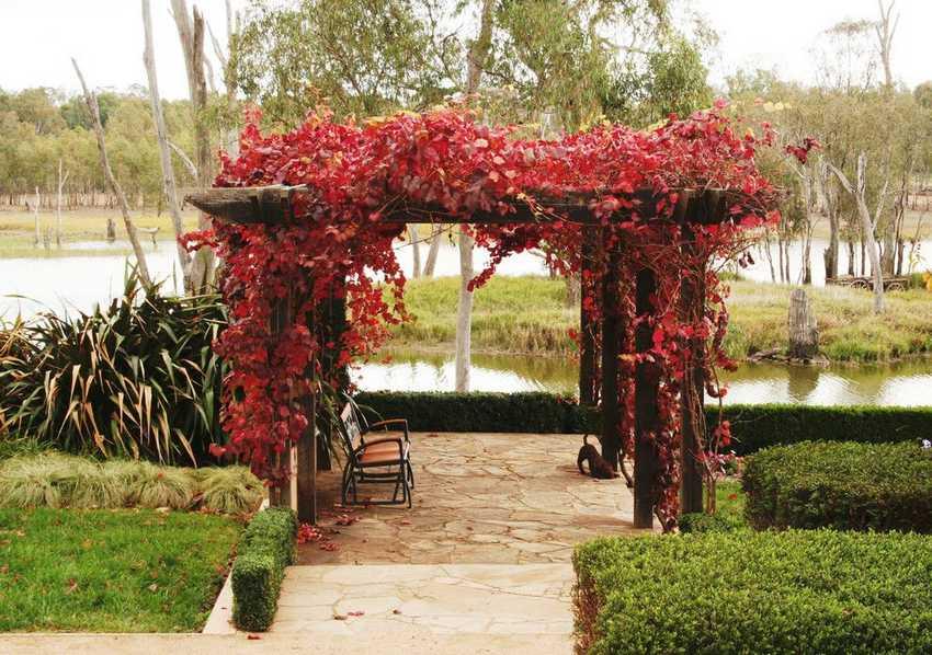 patio arbor design ideas 29