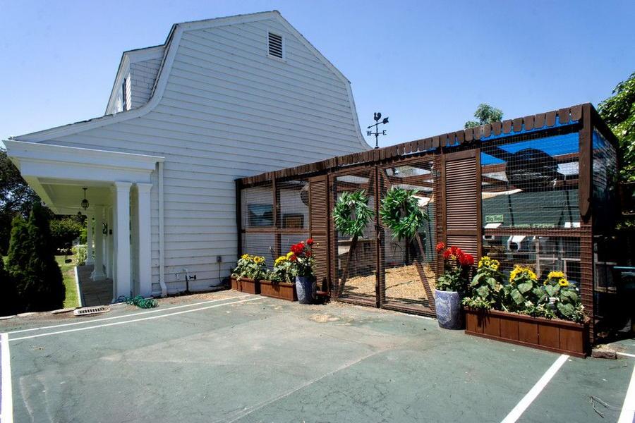 garden shed ideas 13