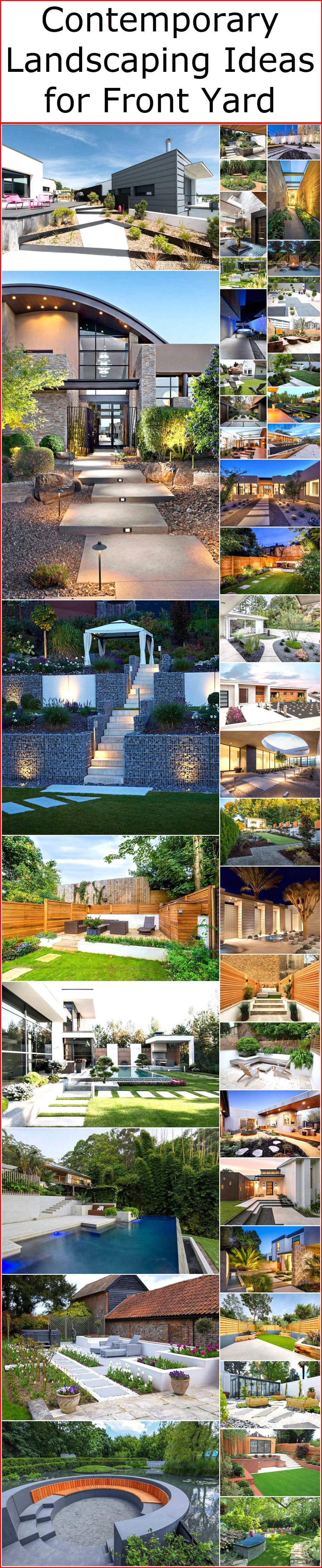 Contemporary Landscaping Ideas for front yard